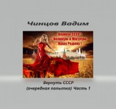 Чинцов Вадим - Вернуть СССР (очередная попытка) часть 1